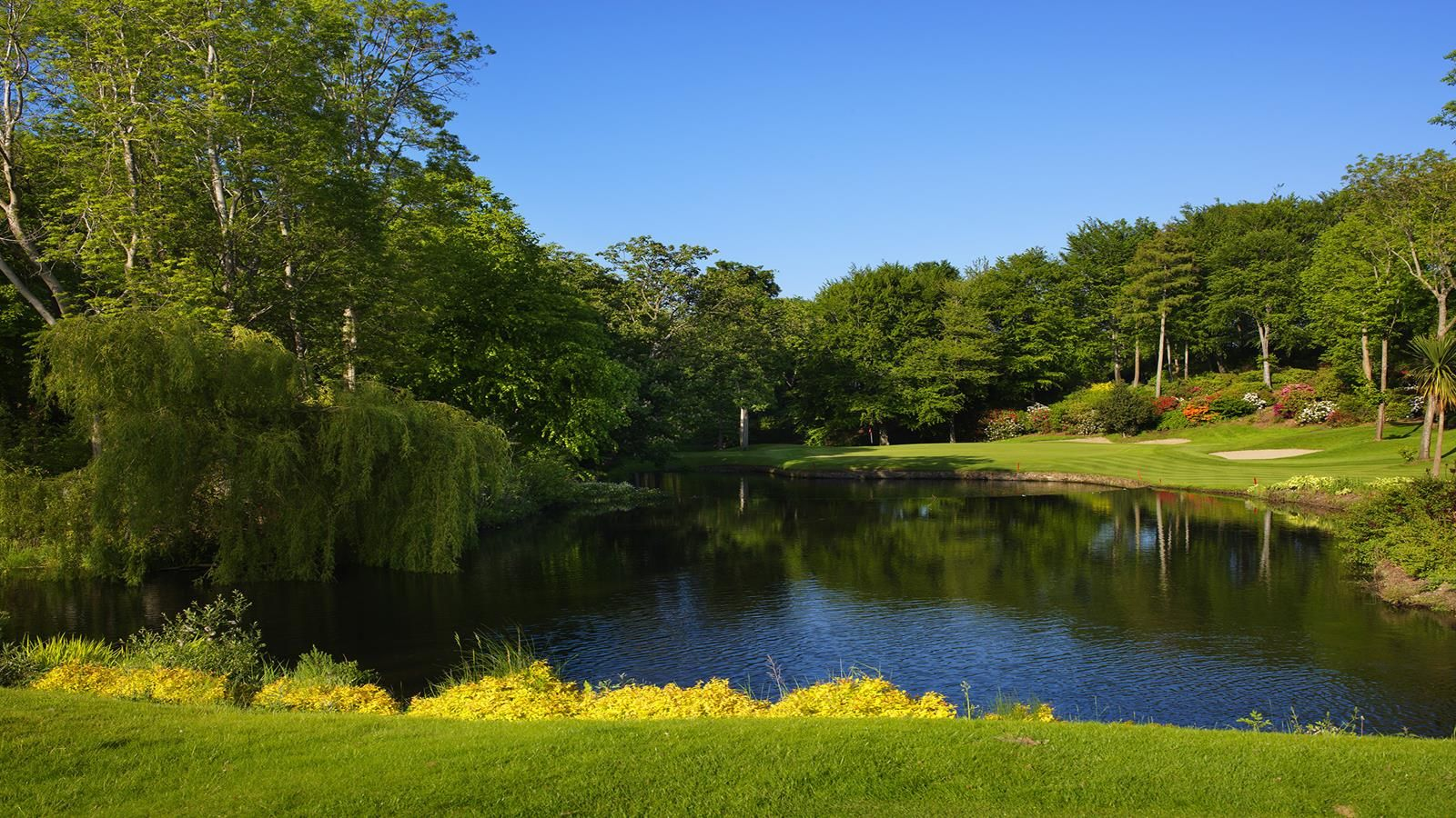 golf resorts ireland druids glen hotel golf resort